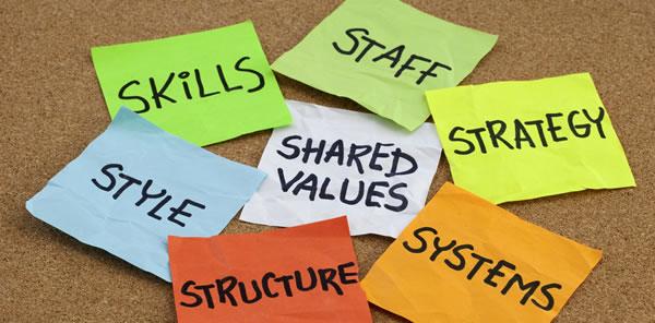 7S - organizational culture