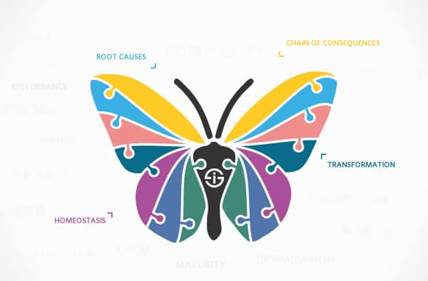 Business transformation butterfly