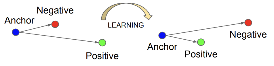 Example of The Effect on Anchor, Positive, and Negative Both Before and After Applying Triplet Loss.