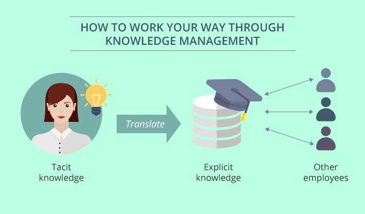 Knowledge management processes