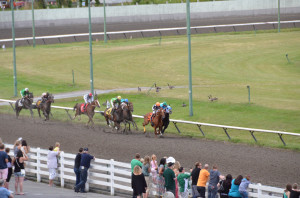 machine learning horse racing