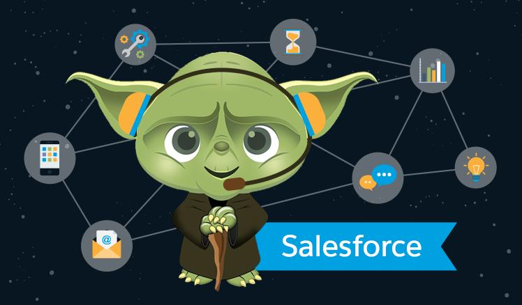 Salesforce case management