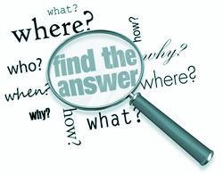 site search
