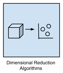 Dimensional Reduction Algorithms