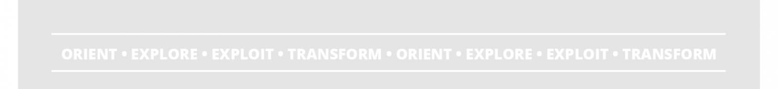 Lean Enterprise: Orient, Explore, Exploit, Transform