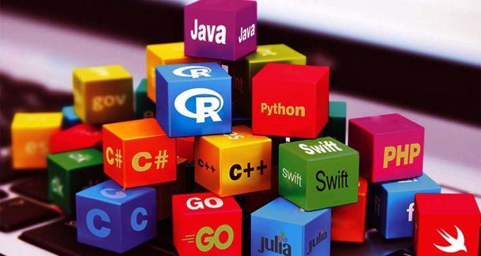 Data Science Programming Language